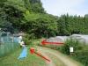 20180725_岡田の谷の半夏生園02