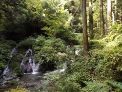 20180815払沢の滝7