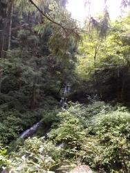 20180815払沢の滝8