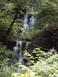 20180815払沢の滝9