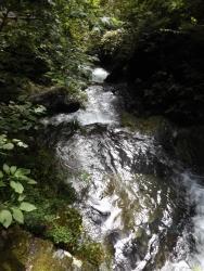 20180815払沢の滝11