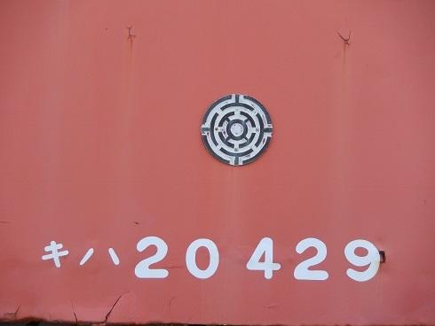 DSCN1276_2018082422044075d.jpg