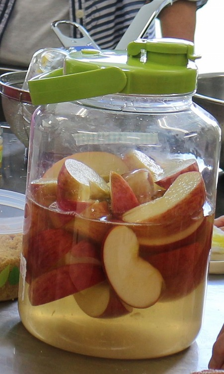 リンゴ酢 30 8 22