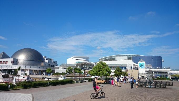水族館へ (2)8:52_resized
