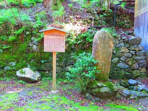 7月22日小沼の滝 032-3r