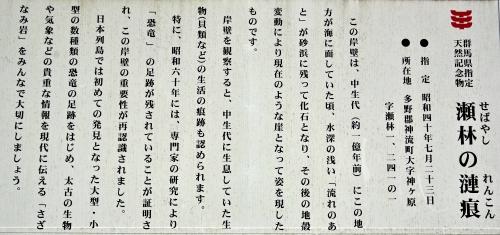 ☆IMGP0438