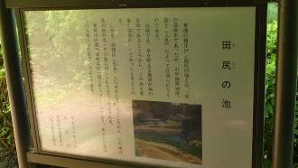 20170610原生の森064