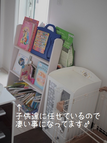 P9095616.jpg