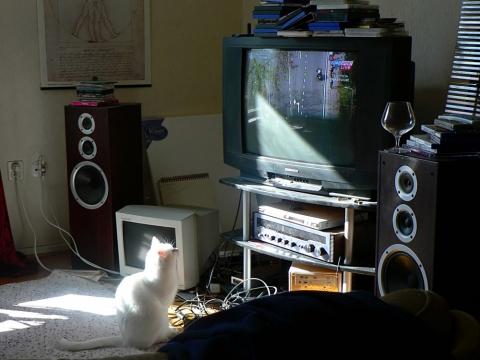 テレビ ブラウン管 スピーカー