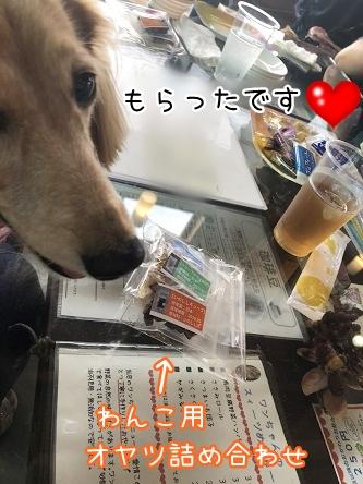 kinako10136.jpeg