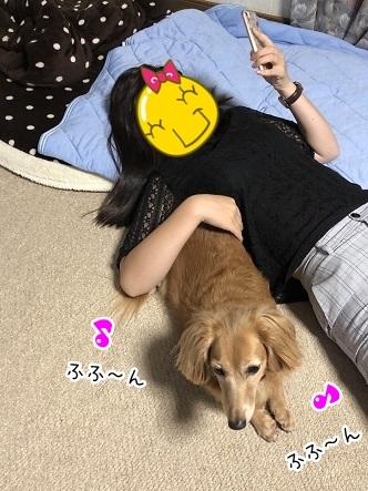 kinako10140.jpeg