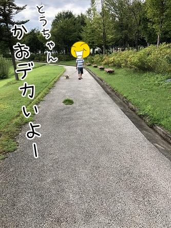 kinako10211.jpeg