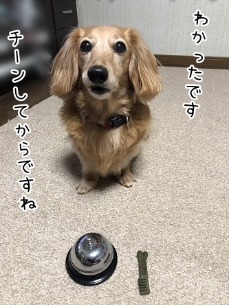 kinako10227.jpeg