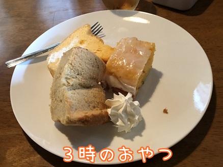 kinako10286.jpeg