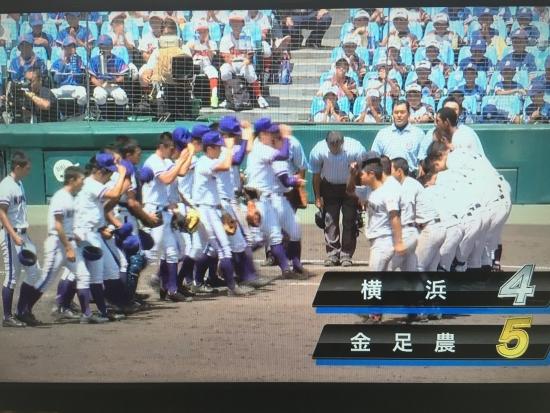 金農ー横浜  甲子園 016