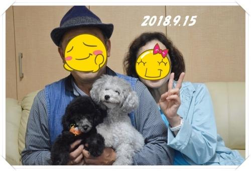 ボスくんお迎え (2) - コピー