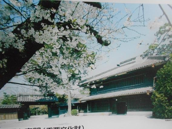 DSCN1143 - コピー