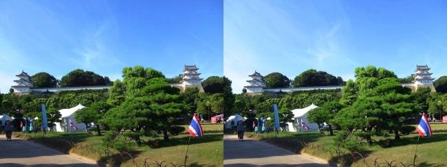 明石公園 武蔵の庭園(平行法)
