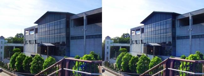 明石市立文化博物館⑤(平行法)