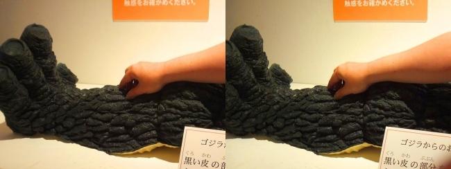 「特撮のDNA展」触れるゴジラの表皮(平行法)