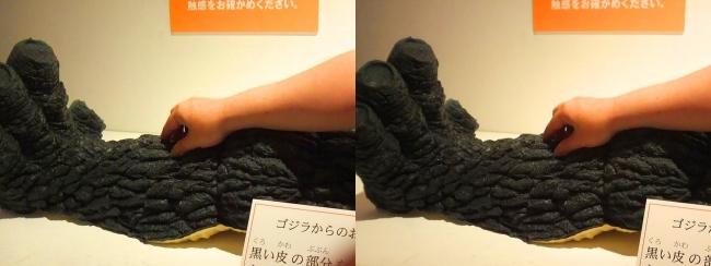 「特撮のDNA展」触れるゴジラの表皮(交差法)