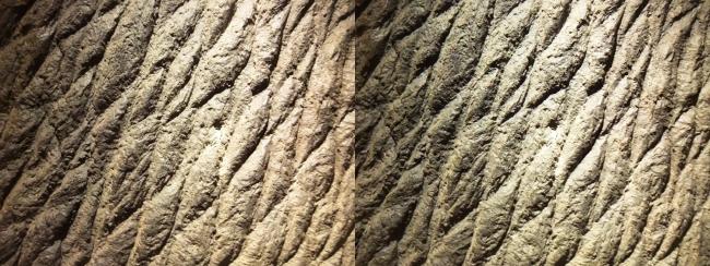 「ゴジラ モスラ キングギドラ 大怪獣総攻撃」(2001年)タイトルバック用 ゴジラの表皮(平行法)