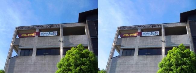 明石市立文化博物館②(平行法)