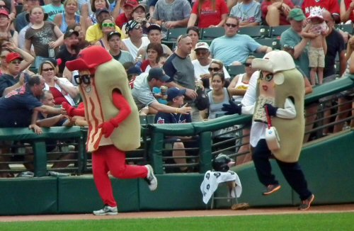 134 500 mascot between innings