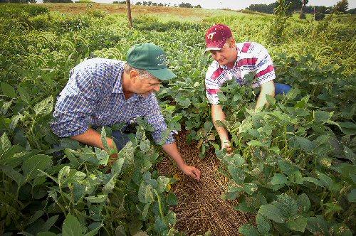 04c 500 agriculture