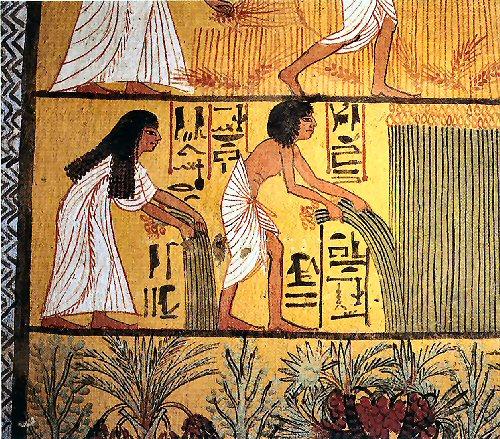 09ob 500 harvest scene Egypt