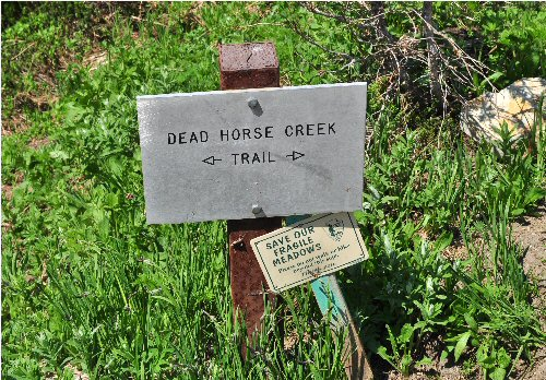 10b 500 dead horse creek