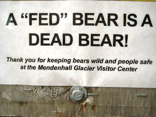10f 500 dead bear