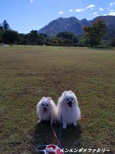 秋晴れ山王山公園芝生