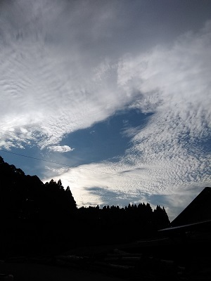 ウロコ雲2018