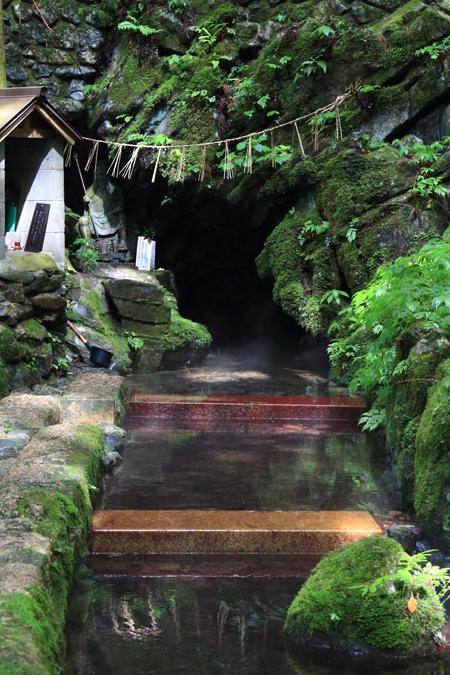 20180812泉の森2