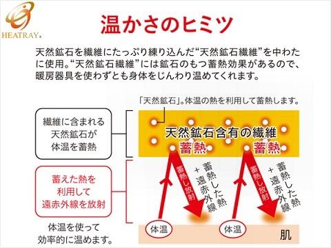 heatrayimage_160325.jpg