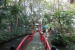立木神社02-18
