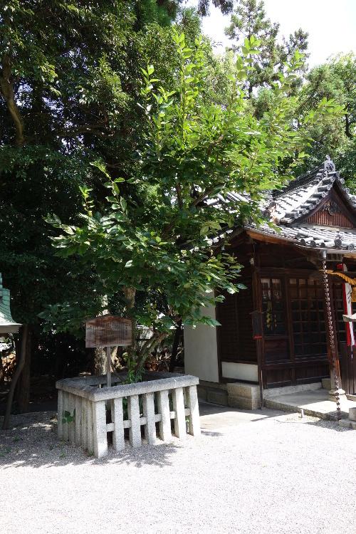 立木神社02-07