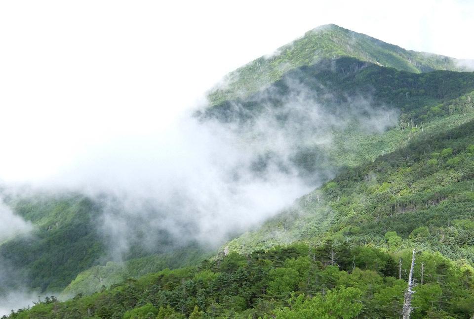 5089 旭岳方面の眺め 960×645