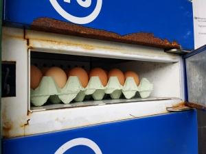 eggvendingmachine08183
