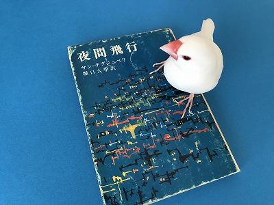 Yakanhiko20180801.jpg