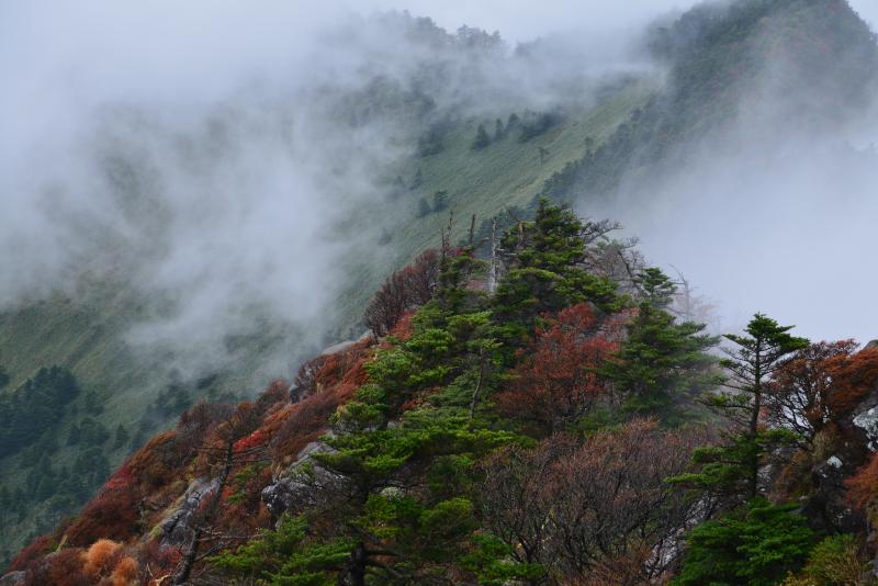 「湧雲 石鎚弥山」