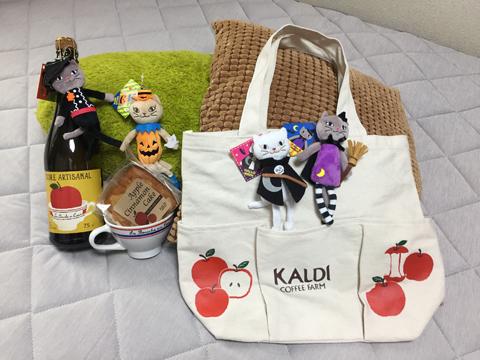 KALDI_apple_cat_090218