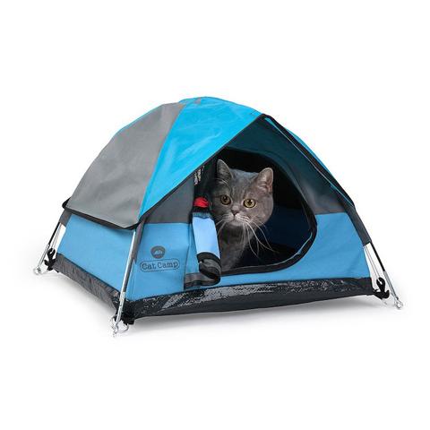 cat-tent-cat-camp-1