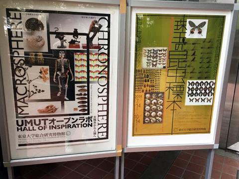 konchuuhyouhon1_092318.jpg