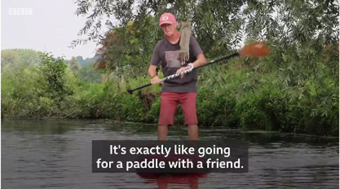 paddleboardingcatNoodle6