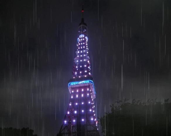 雨の東京タワー (2)