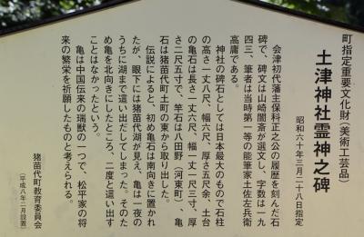 hanitu23.jpg