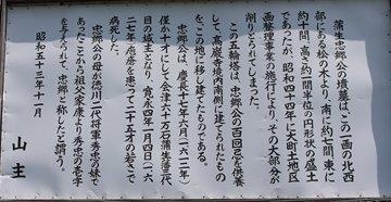 tadasato02.jpg