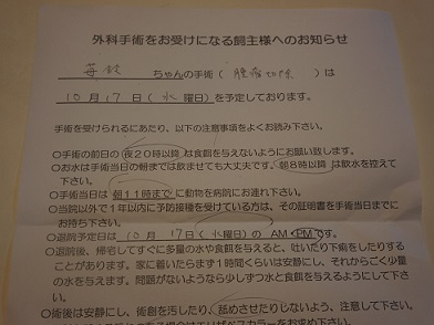 DSC03562.jpg